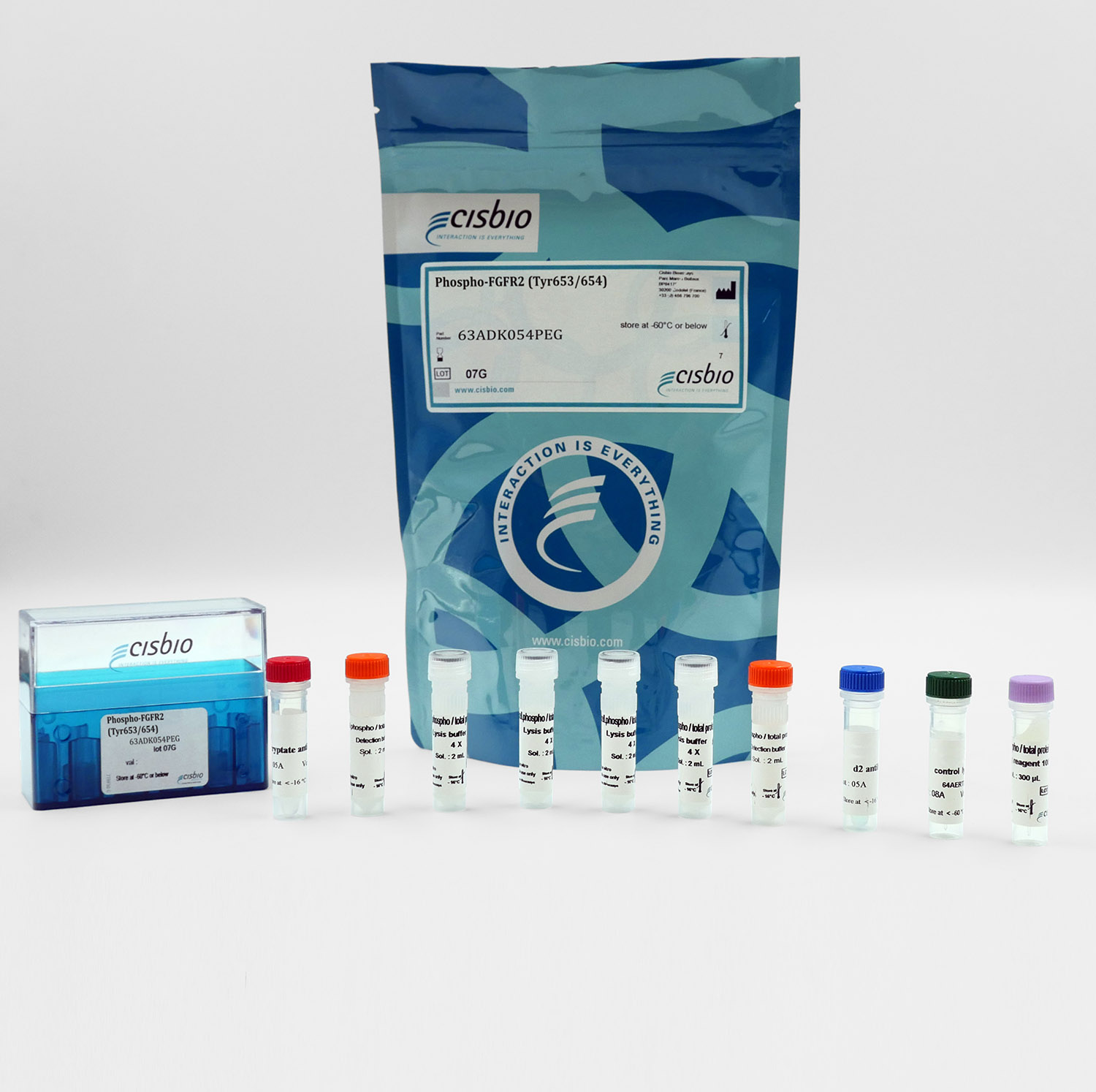 Phospho-FGFR2 (Tyr653/654) cellular kit
