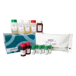 Chromogranin A ELISA kit