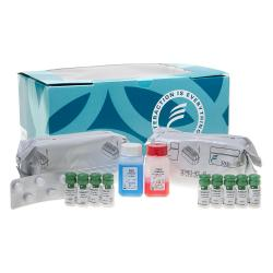 Human chorionic gonadotropin immunoradiometric assay kit