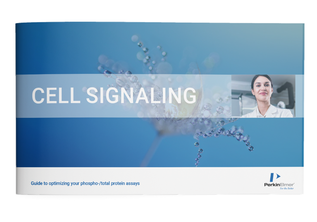 The ultimate guide: Key guidelines to successful cell signaling experiments