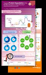 Prot. degradation infographic
